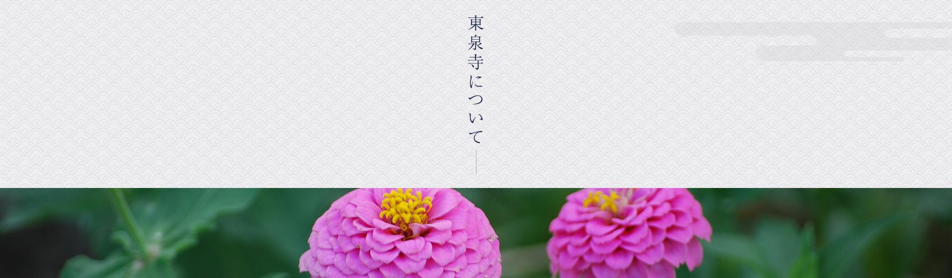 東泉寺について