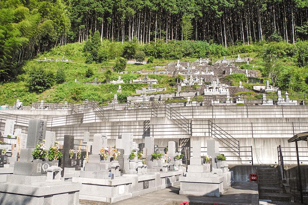 一般墓地分譲地